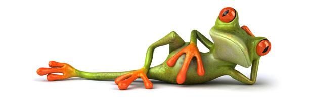 La grenouille, la marmite et le job